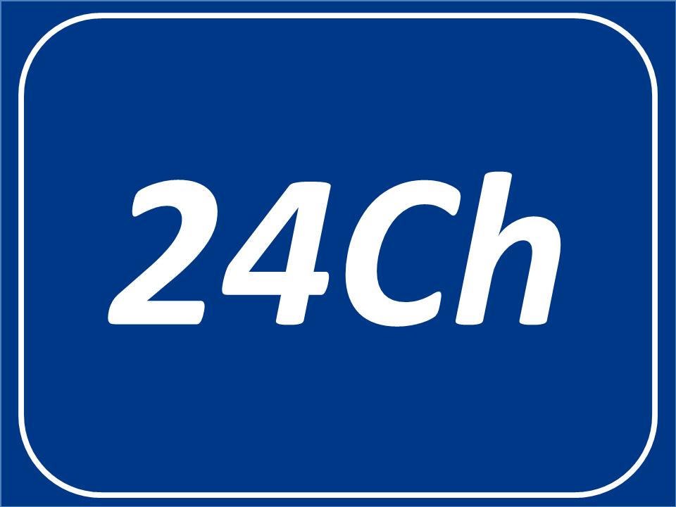 24 Canales de Video